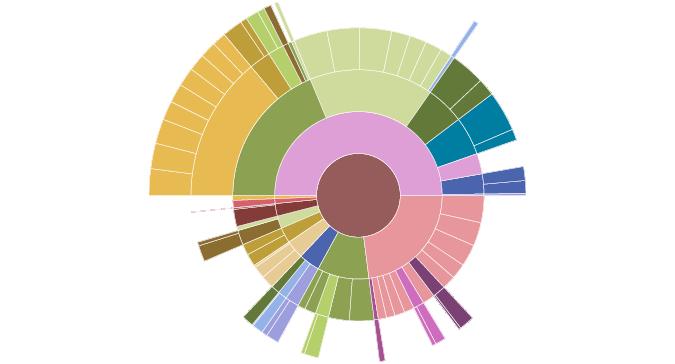 sunburst diagram - charts